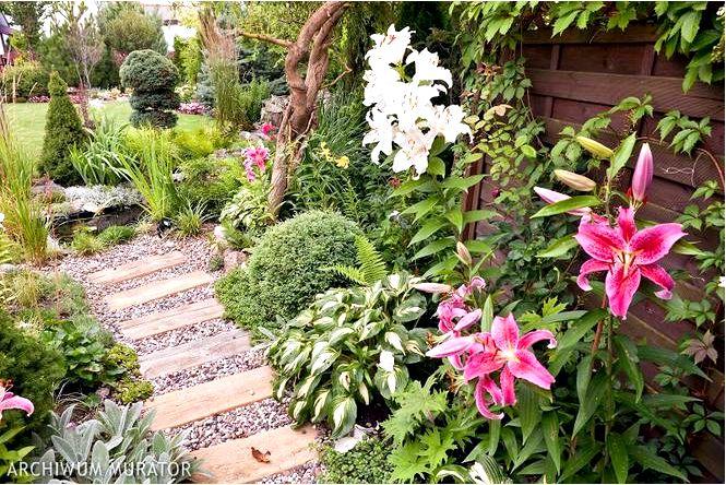 Обустройство сада — идея для ароматного сада