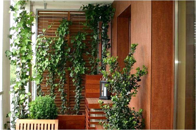 Летний балкон организация постоянного и эффективного балкона