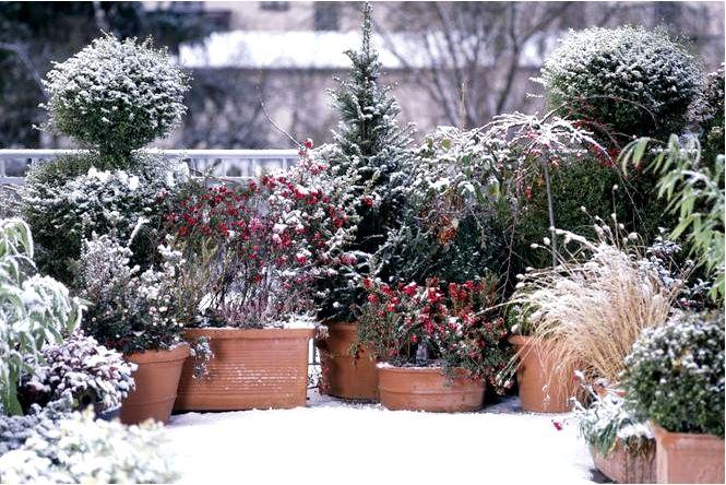 Балкон может быть привлекательным и зимой! идеи для украшения зимнего балкона