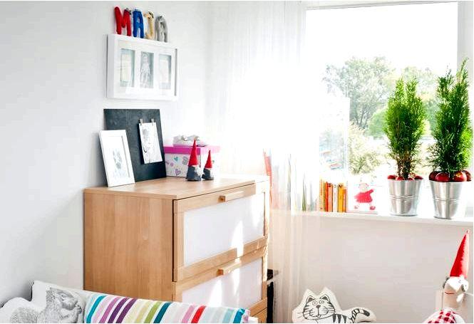 Безопасные комнатные растения для детской комнаты