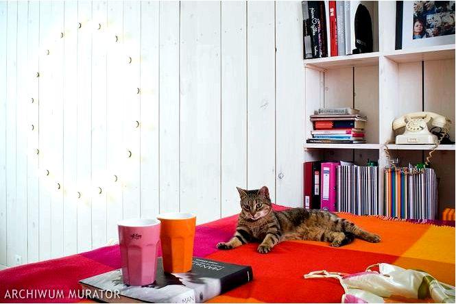 Белая спальня в скандинавском стиле, кровать на платформе и красочные аксессуары