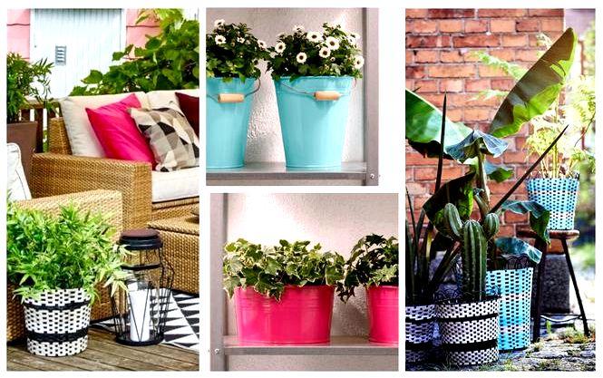 Горшки для террасы, горшки для балкона, цветочные композиции в горшках — вдохновение и советы