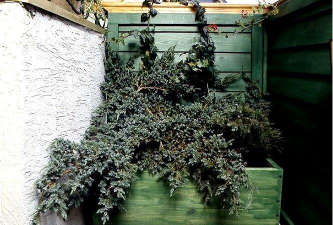 Деревянные ящики на балконе. как сделать деревянный цветочный горшок