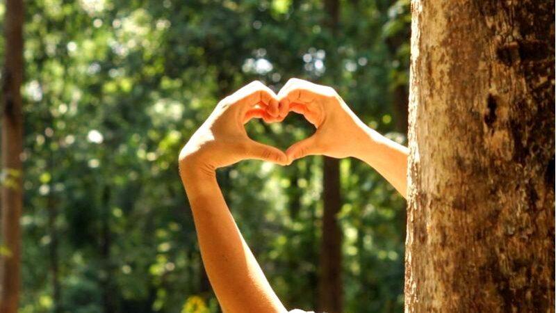 Eco технология в вашем доме-позаботьтесь об окружающей среде с нами!