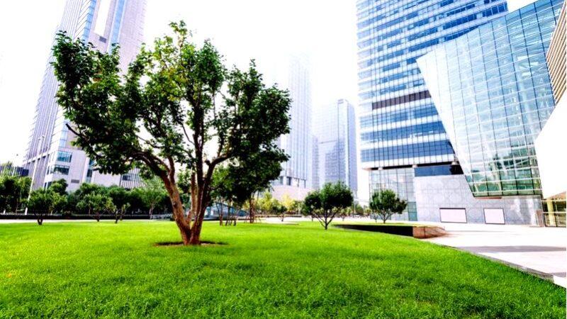 Экологический город без автомобилей-возможно ли это