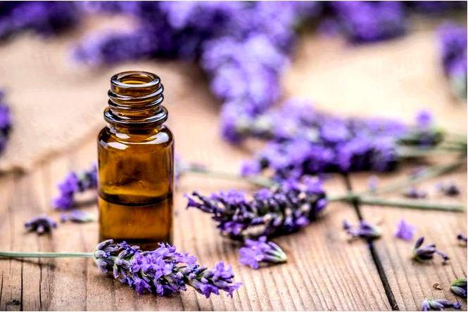 Экологический освежитель воздуха, как сделать натуральный аромат в интерьере