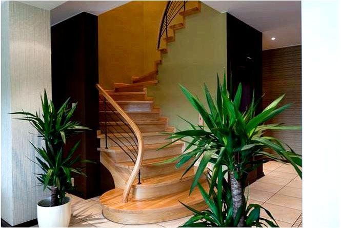 Элегантный интерьер в пастельных тонах и коричневый в интерьерах