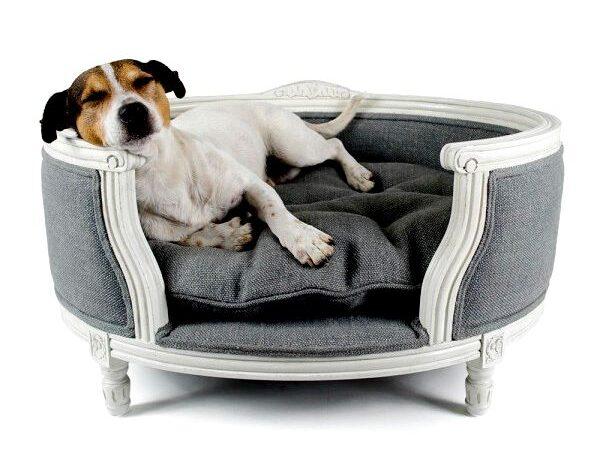 Роскошная мебель для домашних животных
