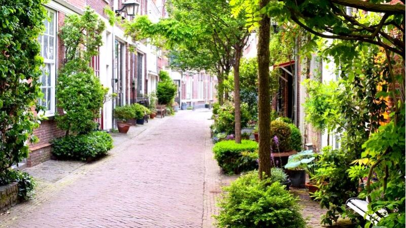 Города-сады завтрашнего дня-архитектура-жилищное вдохновение