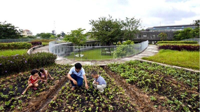 Самые красивые школы и детские сады в мире-архитектура