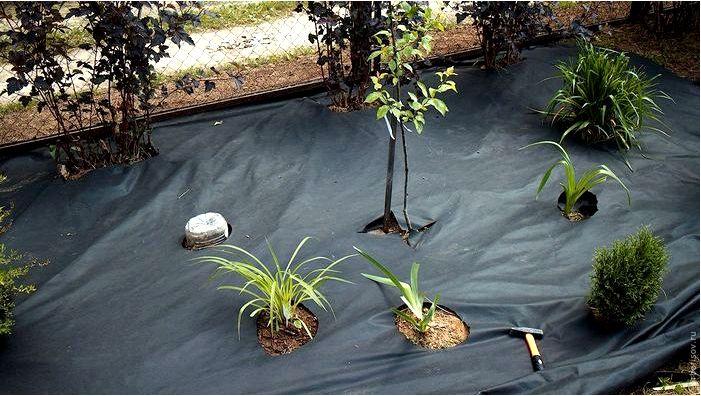 Нетканое полотно для сорняков — виды, цена, применение, мнения, практические советы